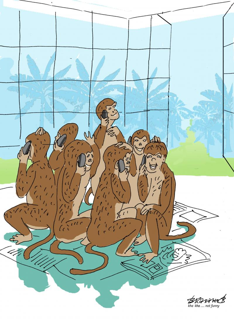 December 14 - international Monkey Day. Nothing human is alien to the APE. And vice versa.
