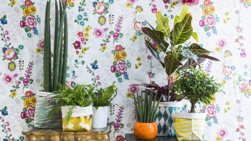 květované retro tapety