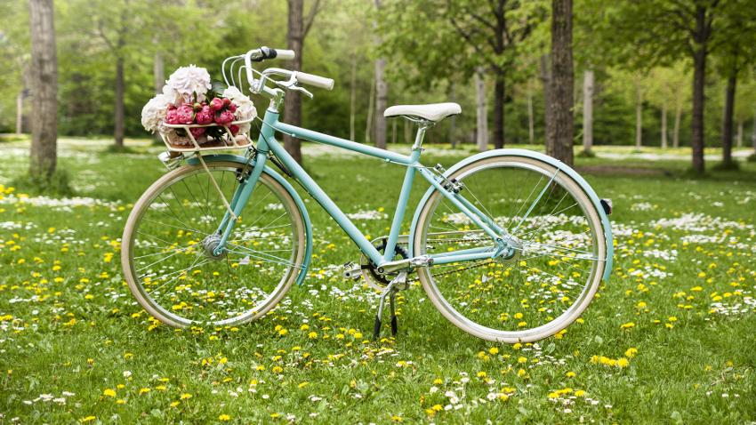 Cestas para bicicletas salud y moda westwing - Cestas para bicicletas ...