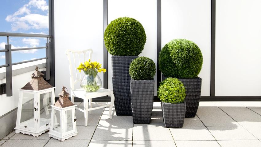 Macetas cuadradas estilo y dise o para tu casa westwing for Macetas para exteriores decoracion