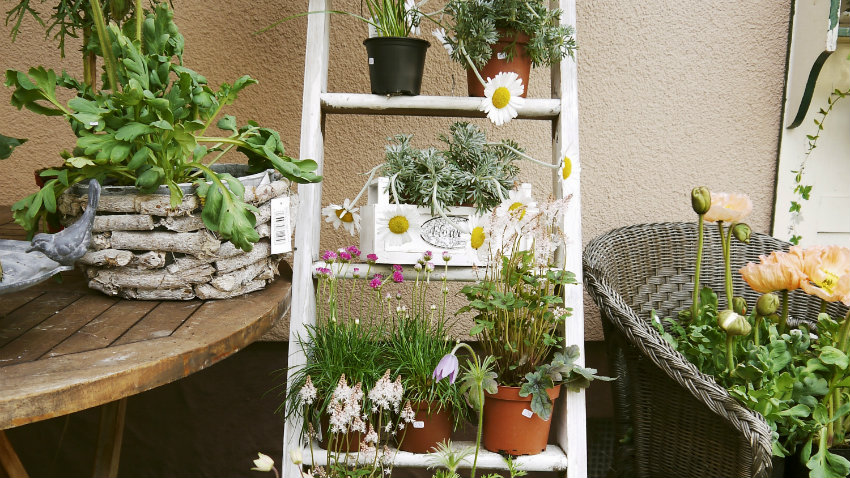 Paredes de terrazas ideas para decorarlas westwing for Terrazas japonesas