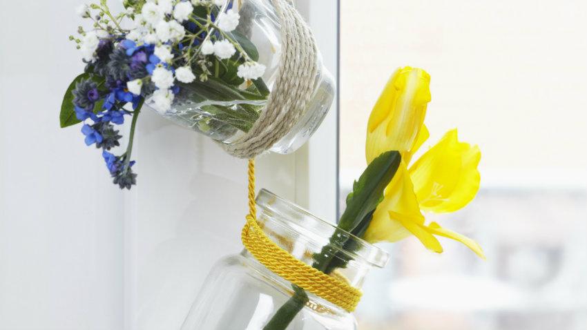 Plantas en cristal