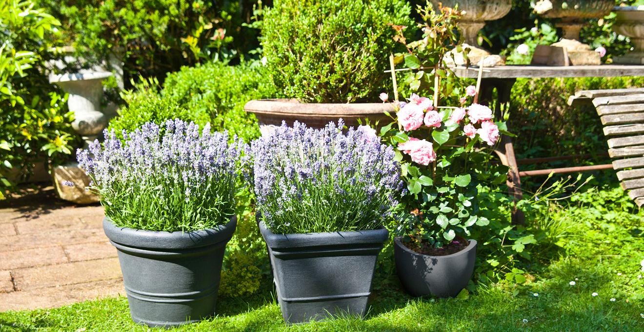 Jardin id e de d coration pour votre jardin westwing for Idee pour jardin exterieur