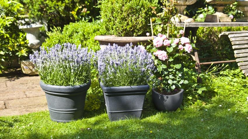 Decorazione Vasi Da Giardino : Vasi decorativi da giardino images vasi decorati