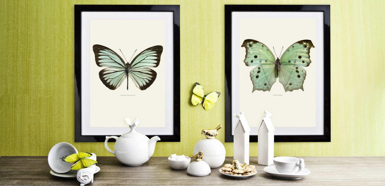 Dalani quadri in vetro eleganti trasparenze for Quadri per cucina