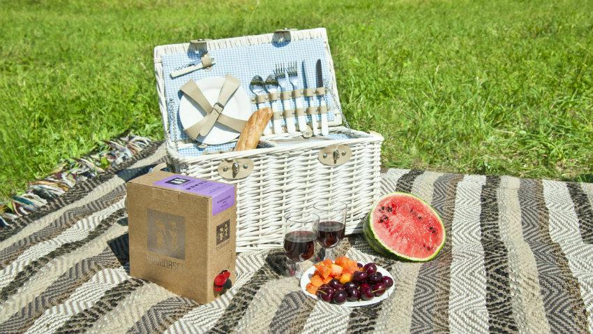 Dalani coperta da picnic brunch all 39 aperto for Come costruire un aggiunta coperta