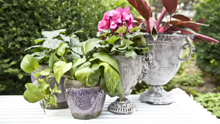Vasi decorativi da giardino