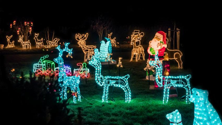 Dalani luci natalizie per esterno eleganza in giardino for Luci per esterno