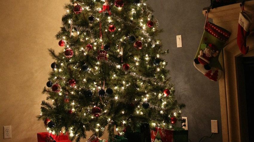 DALANI  Luci per albero di Natale: stile in casa