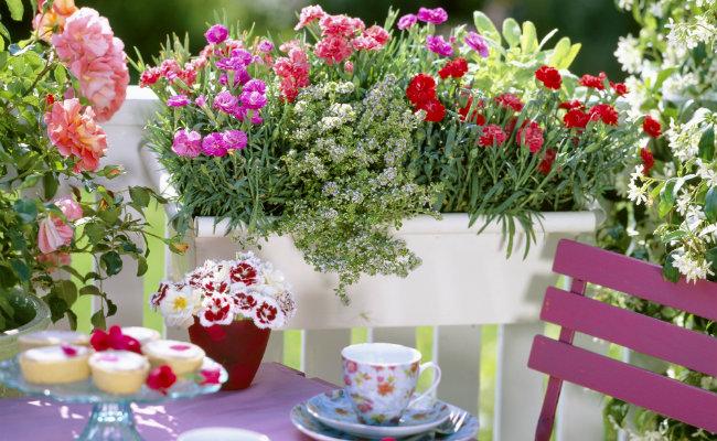Wypoczynek w ogrodzie wśród kwiatów