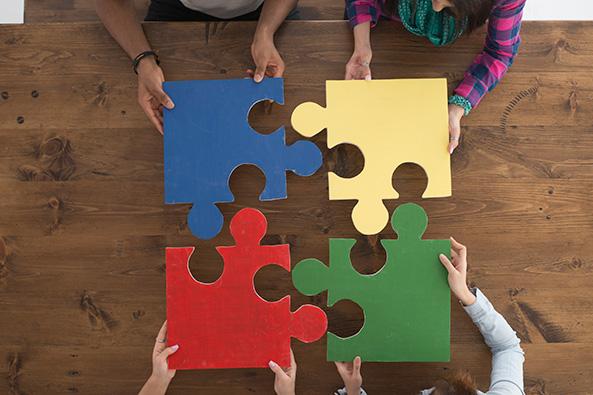 Diversity-PuzzlePieces