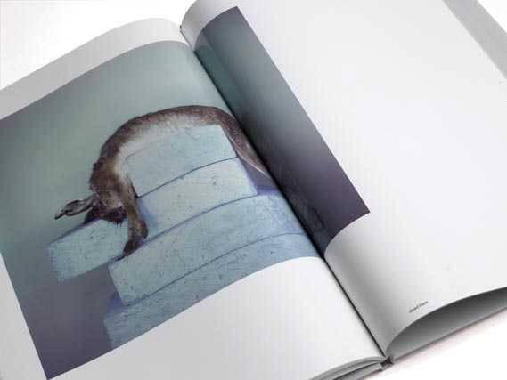 Twenty Two Photographs Book