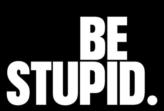dieselsmall_0.jpg - Diesel says Be Stupid - 2094