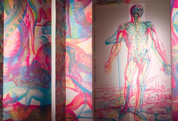 rgbbycarnovsky388_0.jpg - Carnovsky's RGB wallpaper - 2373