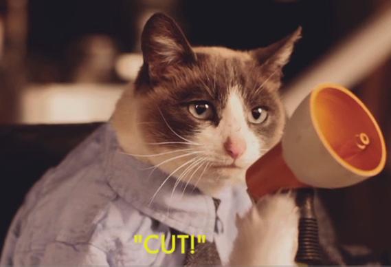 cat2_0.jpg - Great New Promos - 3014