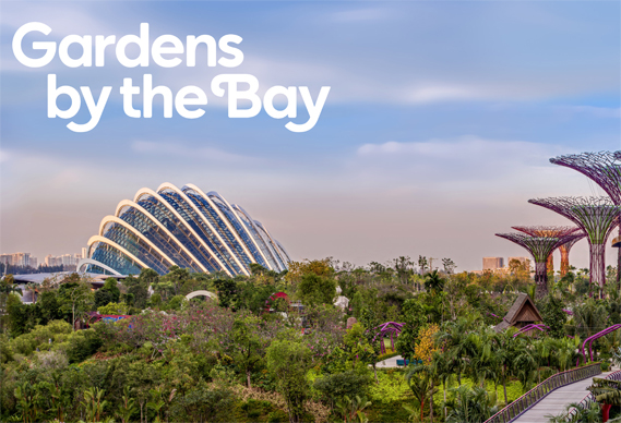 569_3.jpg - Thomas Matthew's identity for Gardens by the Bay - 4675