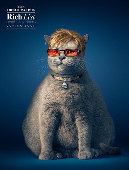 11.0003_2_0.jpg - Fat Cats - 7025
