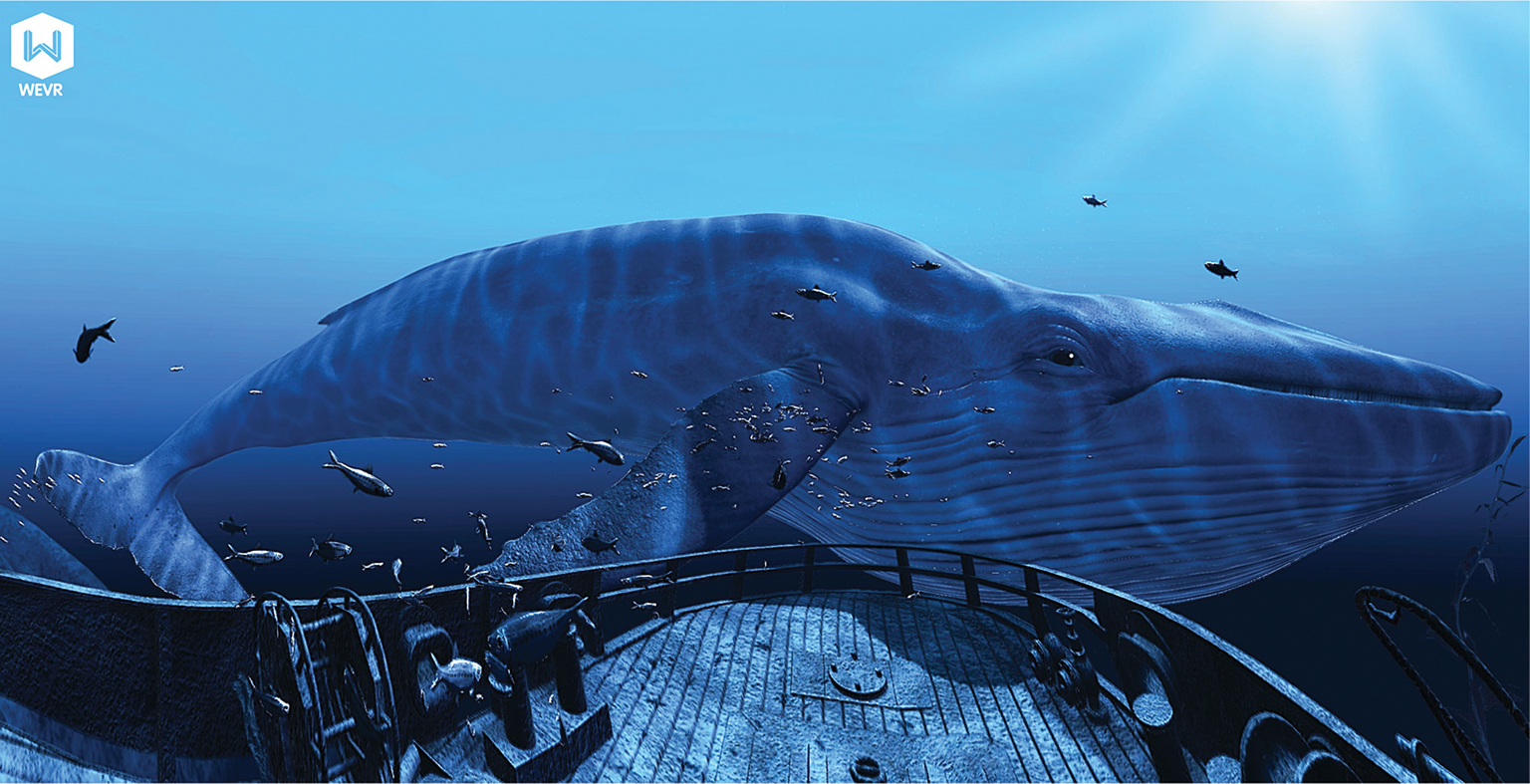 "From TheBlu: Encounter by WEVR. ""Imagine coming face-to-face with an 80-foot blue whale, whose eye ball is almost the size of your entire face"". See wevr.com"