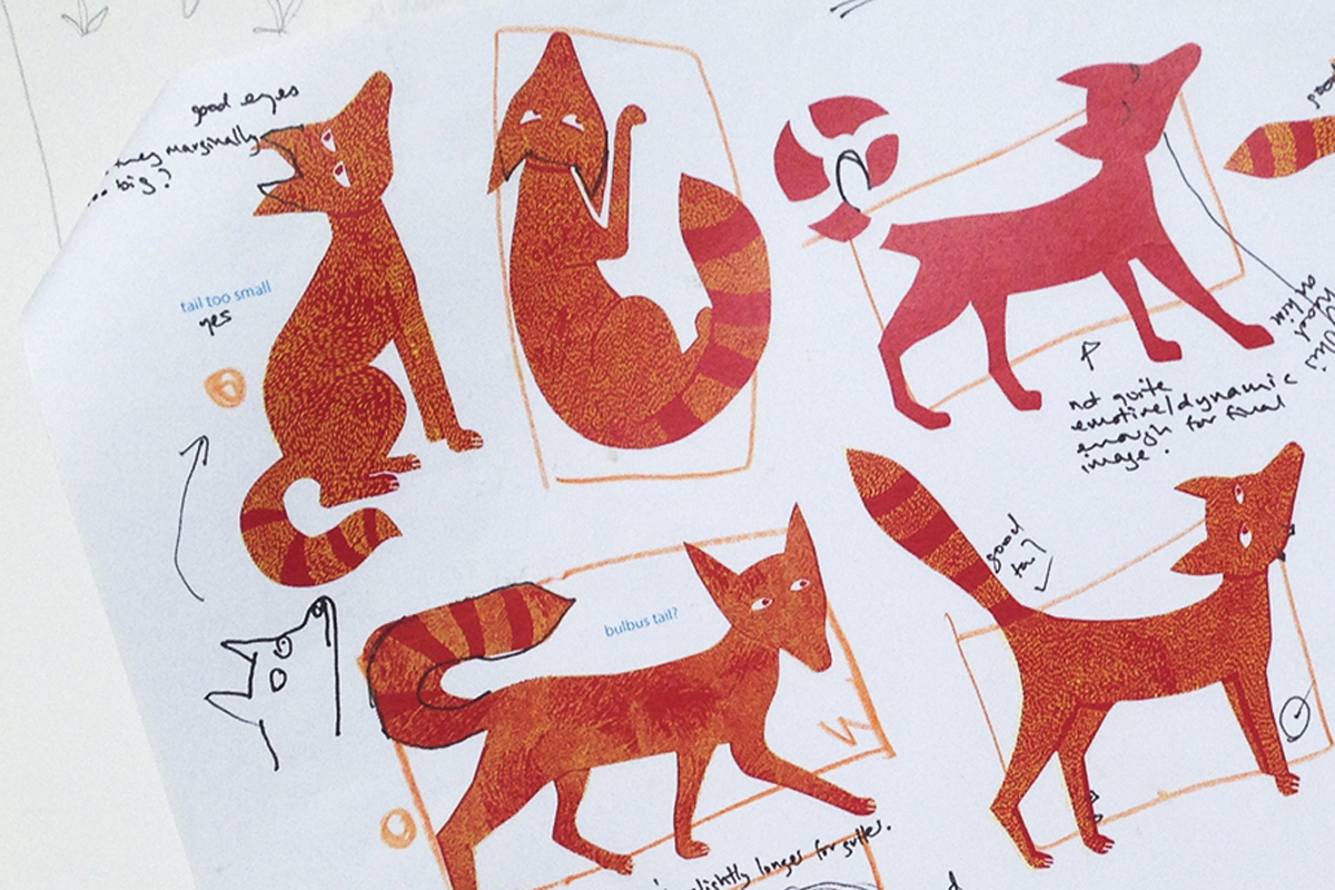 Sketches for the fox