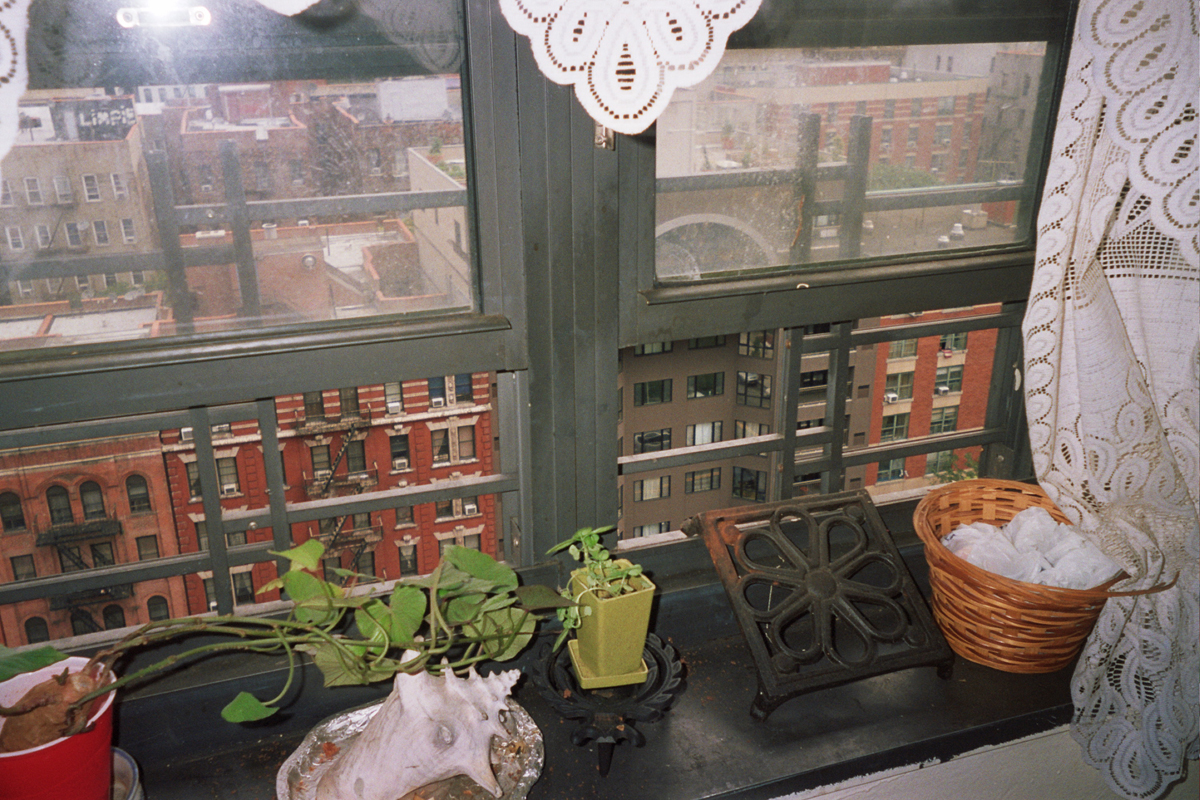 "Photograph by Dorothy Ballard, Manhattanville Houses, Harlem: ""My garden, I'll handle it with care."""