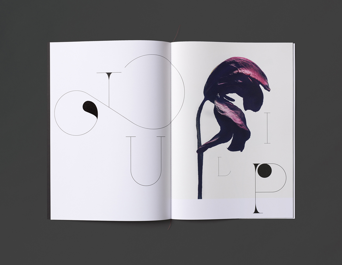 Brochure for Isamu Sawa's Without Water show by Derek Samuel Design