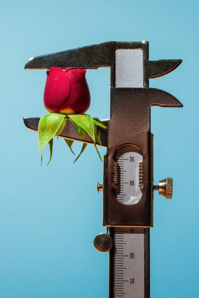 Love, 2014 (personal work) by Maurizio Di Iorio