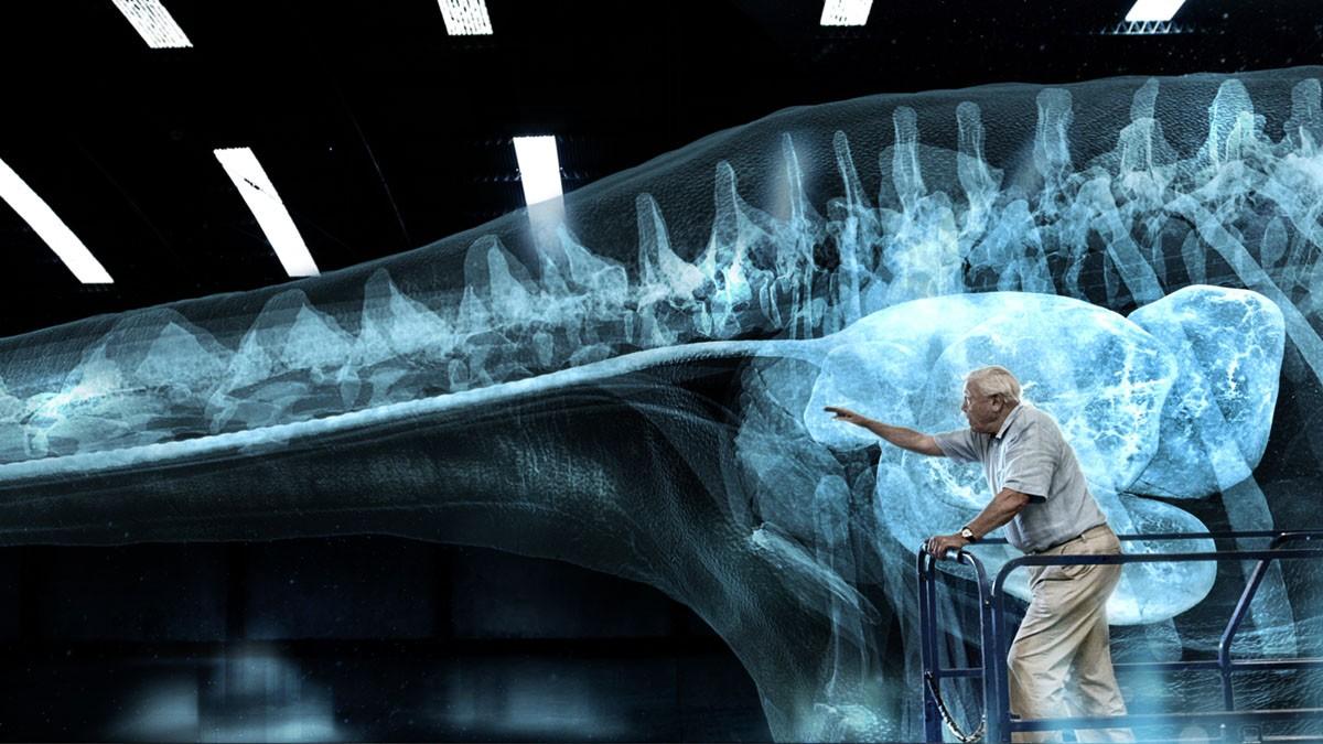 Building the world's largest dinosaur: how Hello Charlie created a CG Titanosaur for David Attenborough's latest documentary
