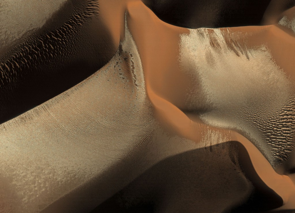Frosted Mars Dunes in Winter_Detail