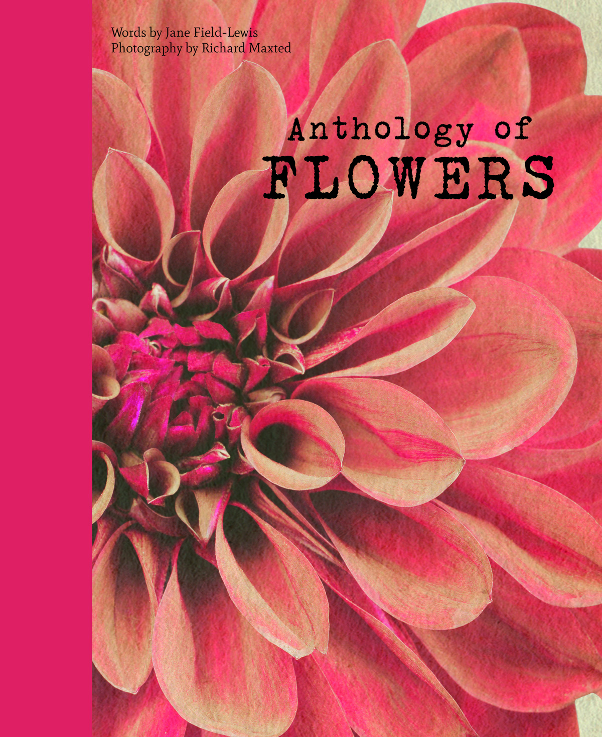 Front cover, Anthology of Flowers by Jane Field-Lewis and Richard Maxted (Quadrille £15) Photography: Richard Maxted