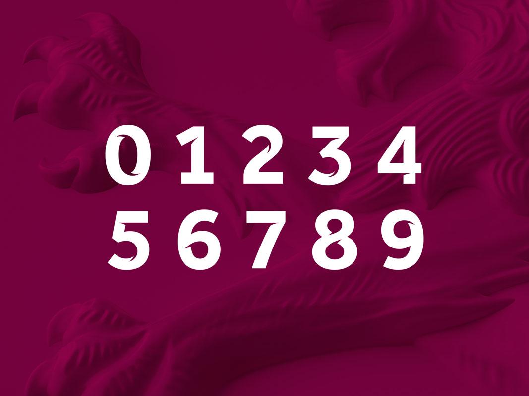 Aston-Villa-Bespoke Numbering