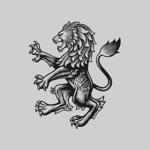 aston-villa-lion-print