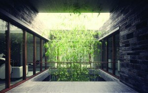 Peter Guthrie visualisation of Innie & Outie building in Qingpu, Shanghai for William O'Brien Jr architects