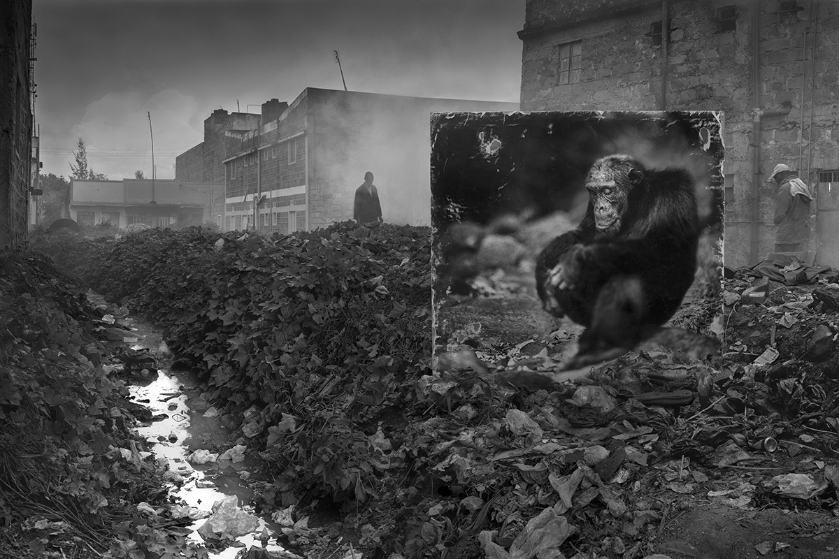 Factory with Rhino, 2014, © Nick Brandt, Courtesy Atlas Gallery