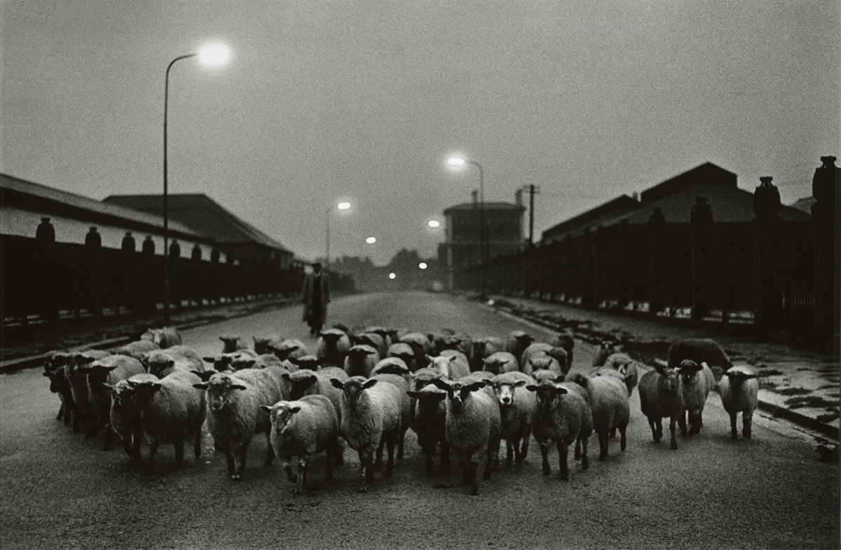 Photograph by Don McCullin for Photo London
