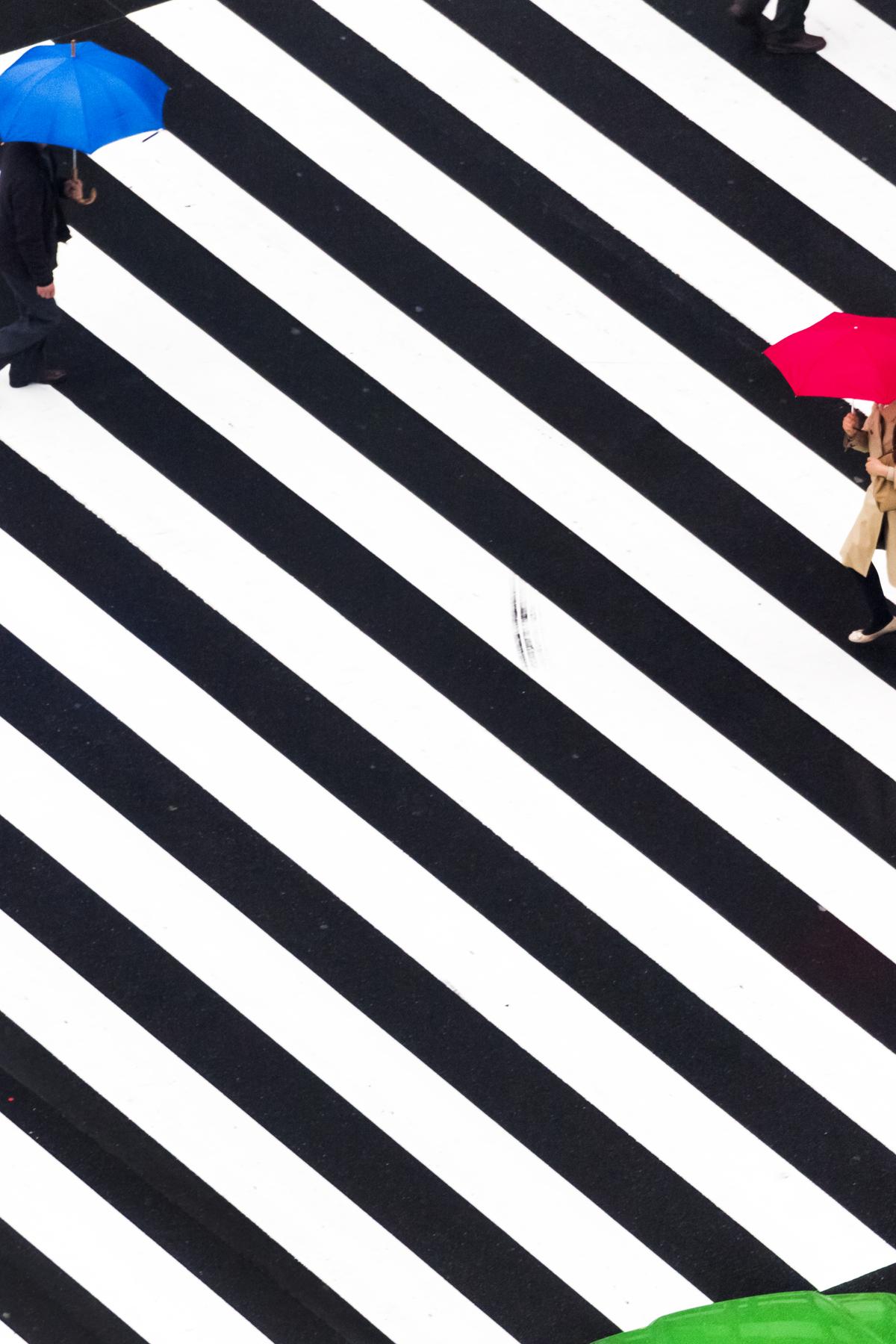 From Rain by Yoshinori Mitzutani