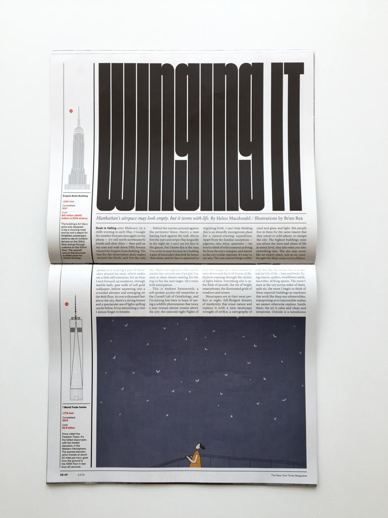 NewYorkTimesMag-800Feet-sidewaysissue10