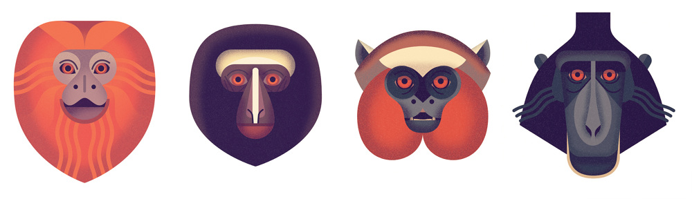 Mad-About-Monkeys-Owen-Davey-Illustration-Faces_14_1000