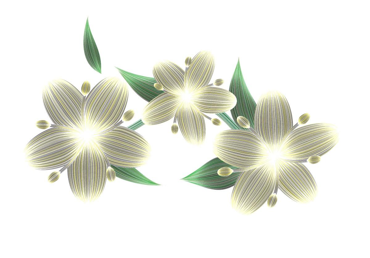 elderflower-temptation-2000-CRsite