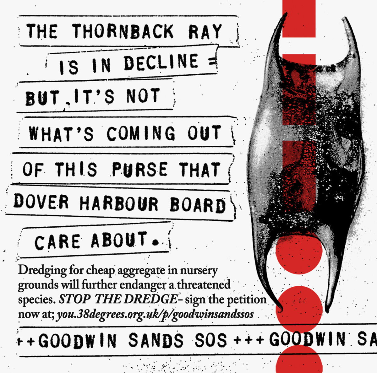 Richard Evans Goodwin Sands campaign 5