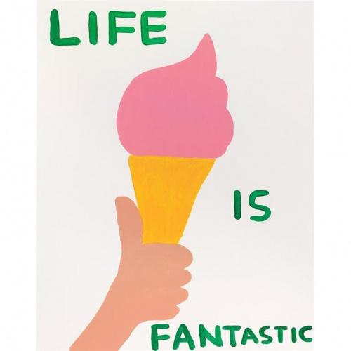 david-shridgley-life-is-fantastic-product