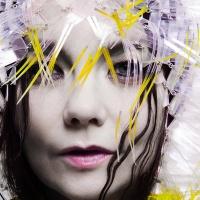 Bjork Vulnicura Album Art