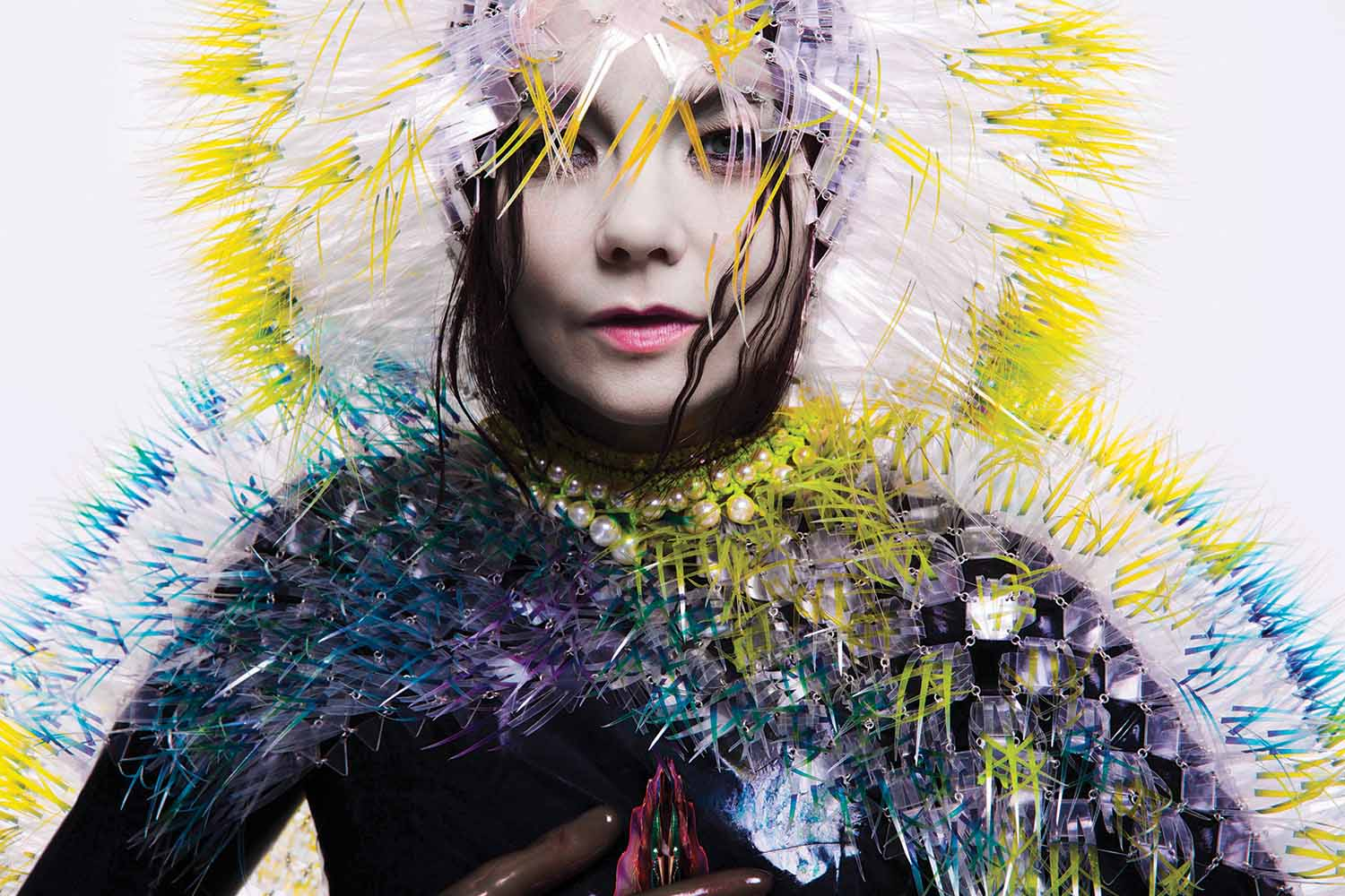 Artwork for the Vulnicura album, by M/M Paris with portrait by Inez Van Lamsweerde and Vinoodh Matadin
