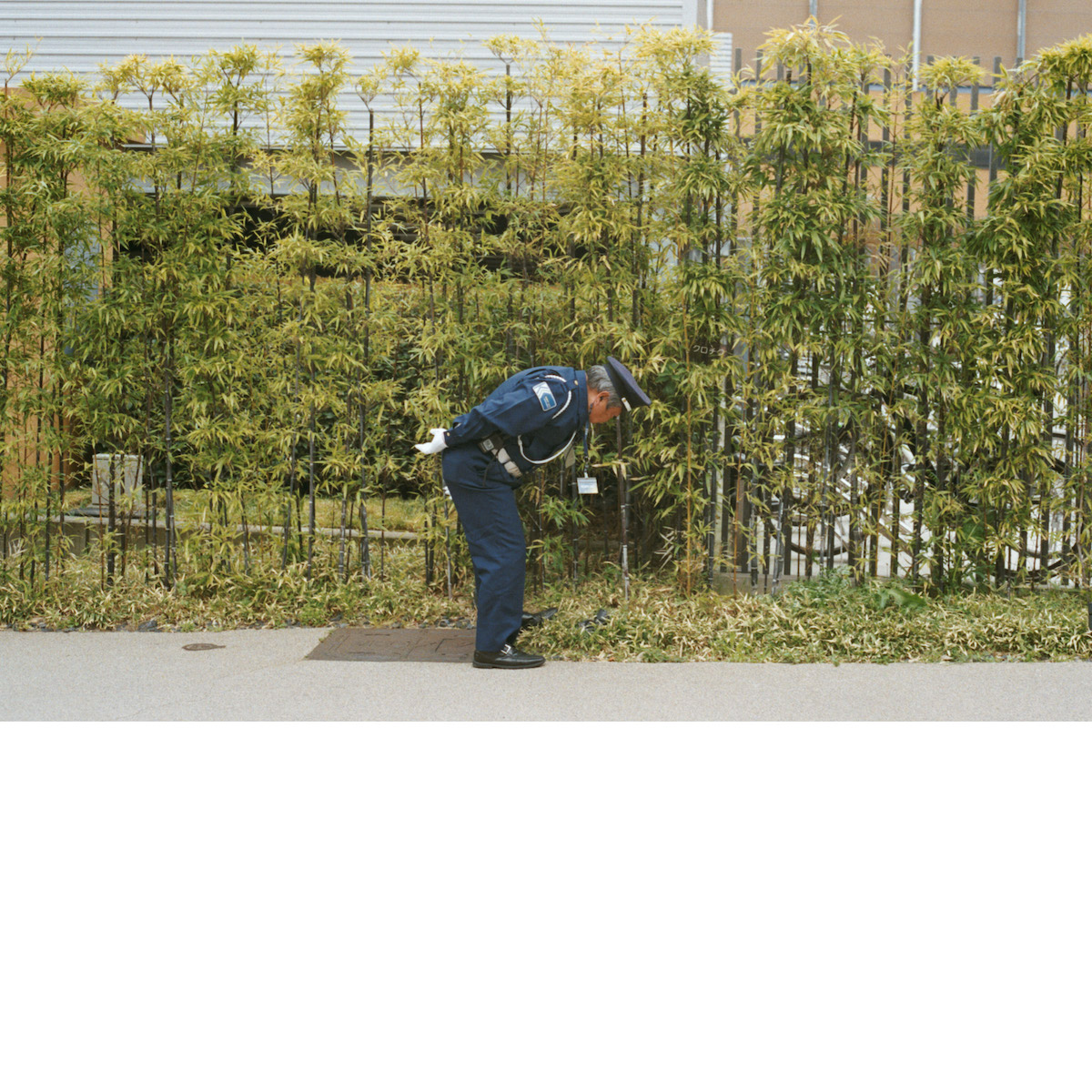 The cover of Gold Panda's third album, Good Luck and Do Your Best. The image, taken by Lewis, shows a security guard in Kyoto bending down to pick up some rubbish