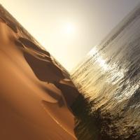 mark-pritchard-under-sun