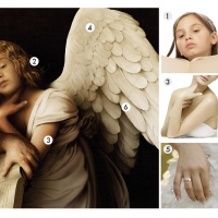 Images used to recreate the angel