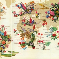 The World of Flowers, May 1968. © National Geographic Partners, LLC All rights reserved NATIONAL GEOGRAPHIC and Yellow Border Design are trademarks of the National Geographic Society, used under license