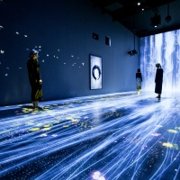 teamLab Transcending Boundaries_04