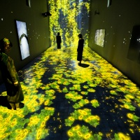 teamLab, Transcending Boundaries, Pace London gallery
