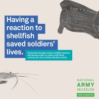 National Army Museum ad