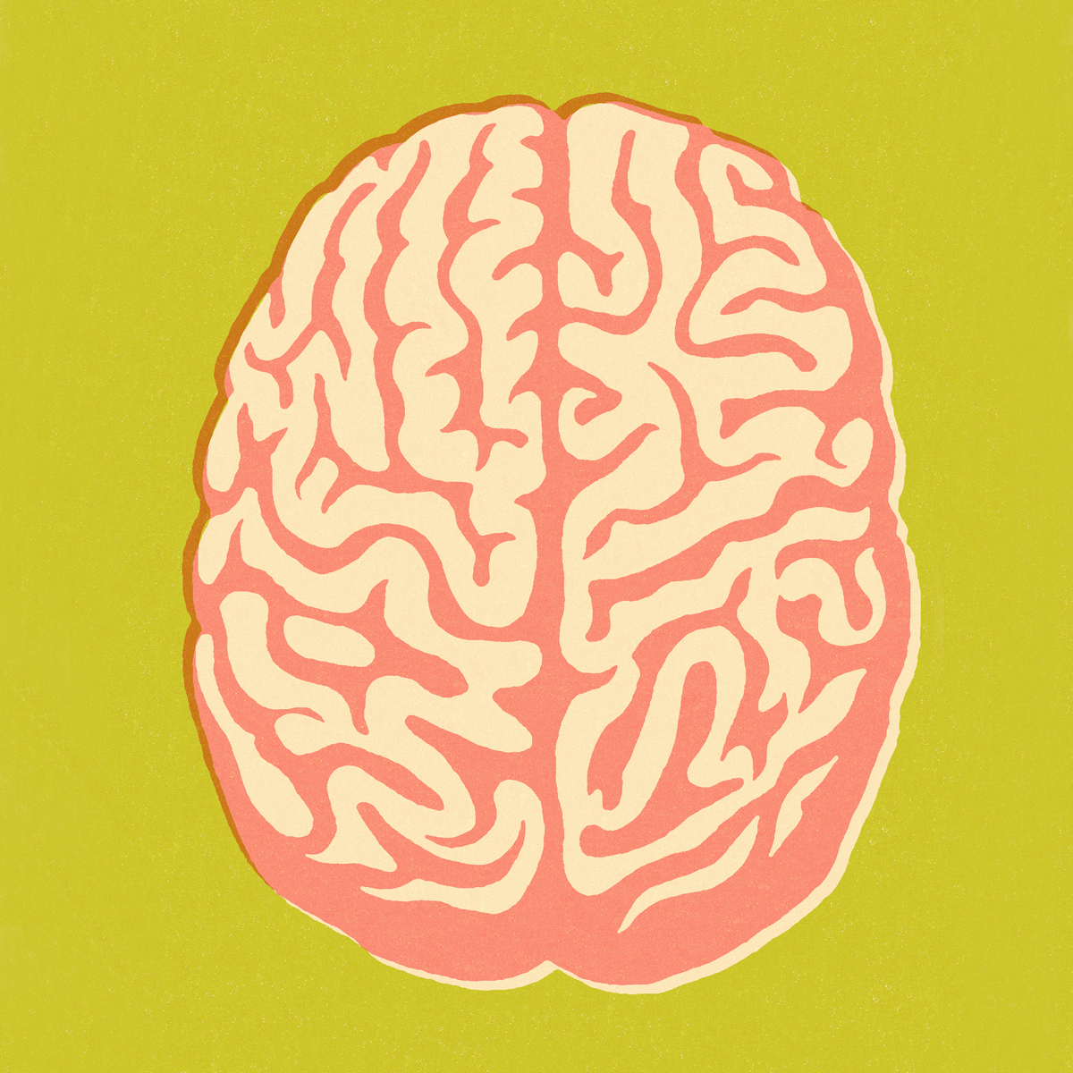 Debunking the left brain/right brain myth